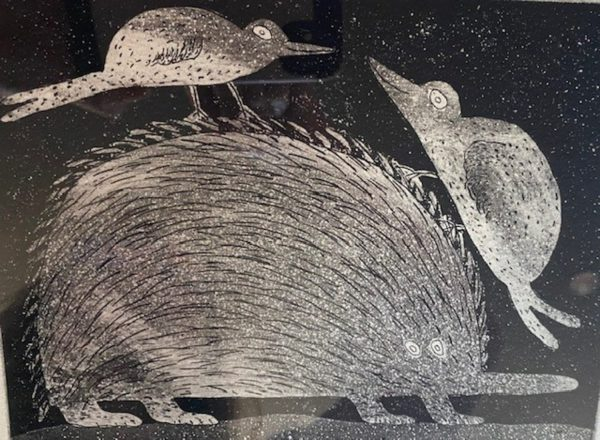 Echidna with Playful Birds